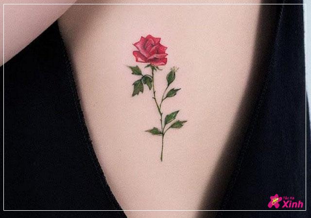 hình xăm hoa hồng mini nhỏ đẹp