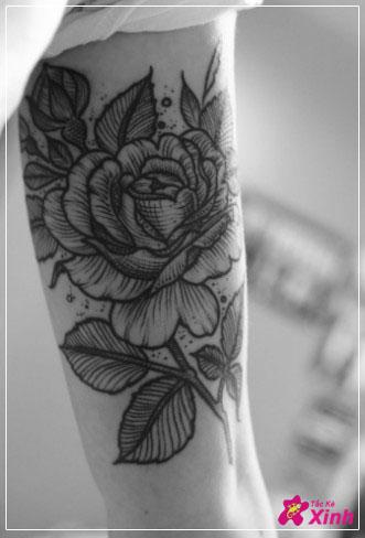 hình xăm hoa hồng ở bắp tay 02