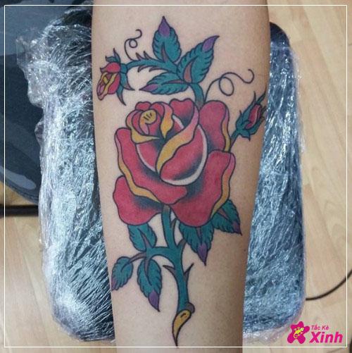 hình xăm hoa hồng ở cánh tay đep ấn tượng nhất