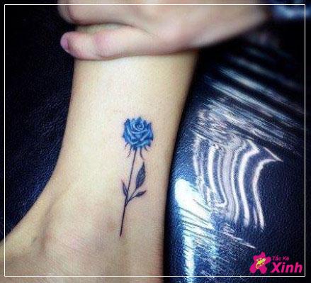 hình xăm hoa hồng xanh mini cá tính