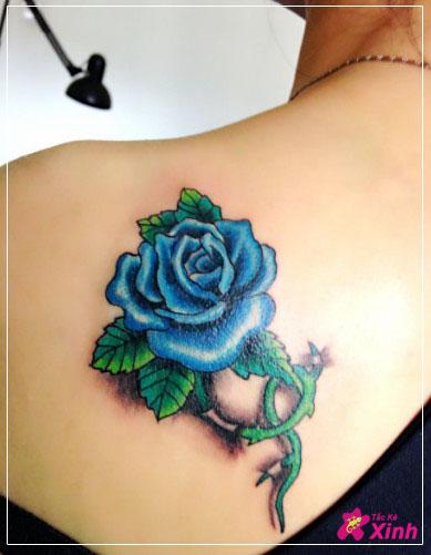 hình xăm hoa hồng xanh ở vai đẹp 001
