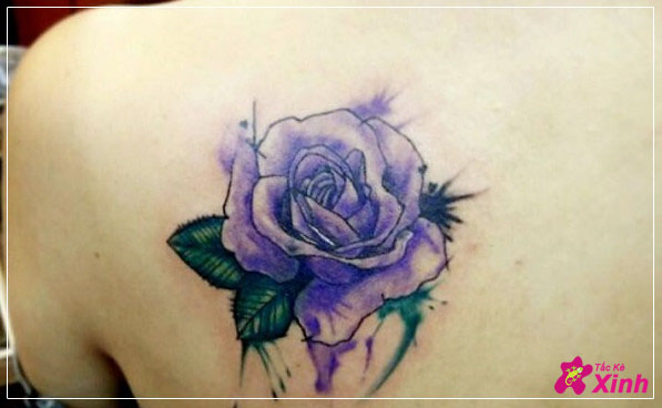 hình xăm hoa hồng xanh ở vai đẹp 002