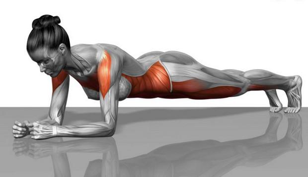 tác dụng của plank như thế nào khi tập