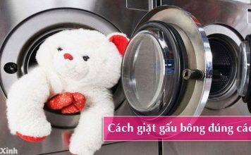 cách giặt gấu bông