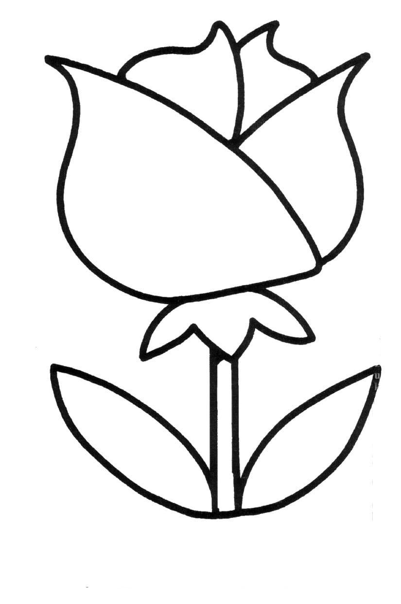 tranh tô màu cho bé 3 tuổi - tranh tô màu bông hoa đẹp nhất