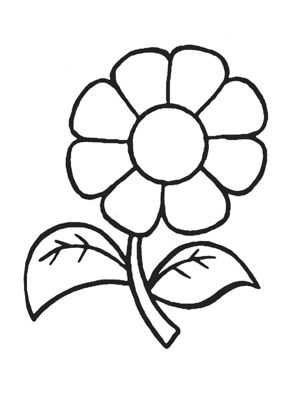 tranh tô màu cho bé 3 tuổi - tranh tô bông hoa