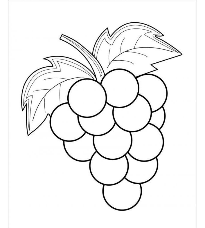 tranh tô màu cho bé 3 tuổi - hình ảnh các loại quả cho bé tô màu