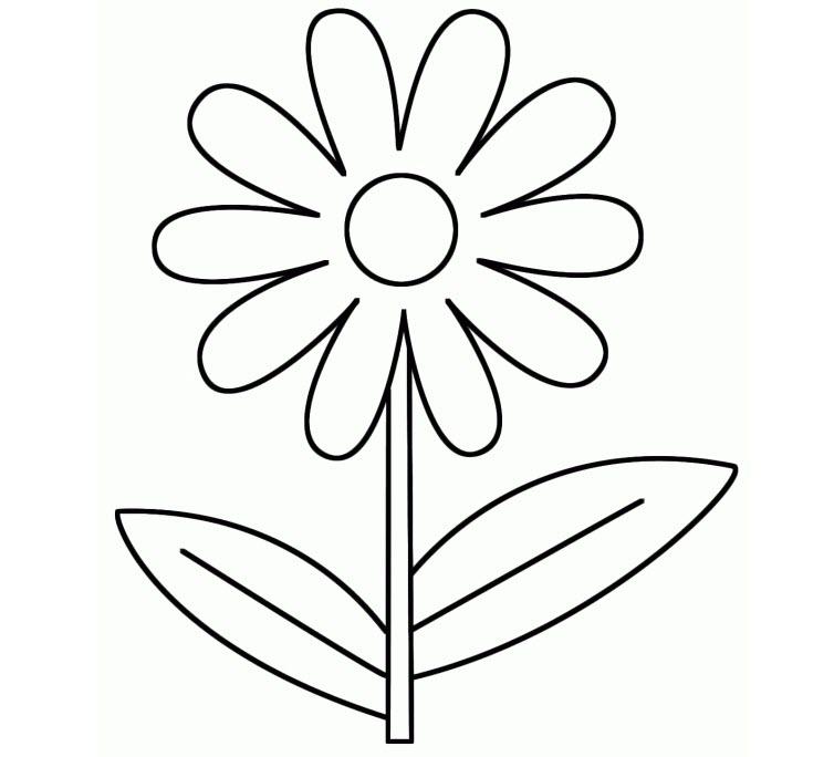 tranh tô màu cho bé 3 tuổi - tranh tô màu các loại hoa