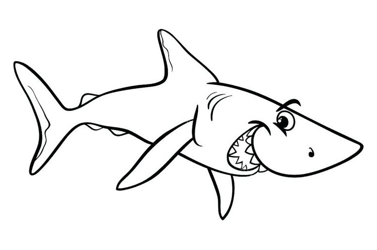 tranh tô màu cho bé 3 tuổi - tranh tô màu cá mập