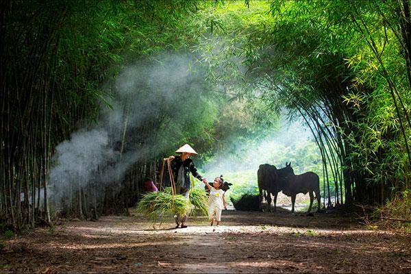 Hình ảnh làng quê Việt Nam 01