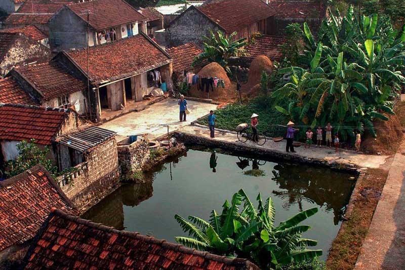 Hình ảnh làng quê Việt Nam 011