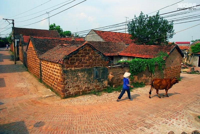 Hình ảnh làng quê Việt Nam 021