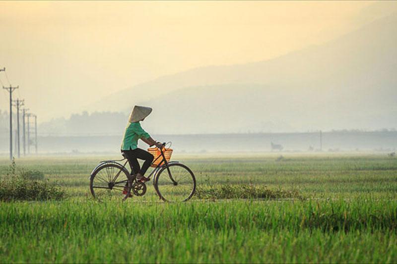 Hình ảnh làng quê Việt Nam 023