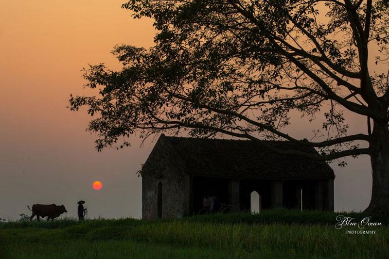 Hình ảnh làng quê Việt Nam 026