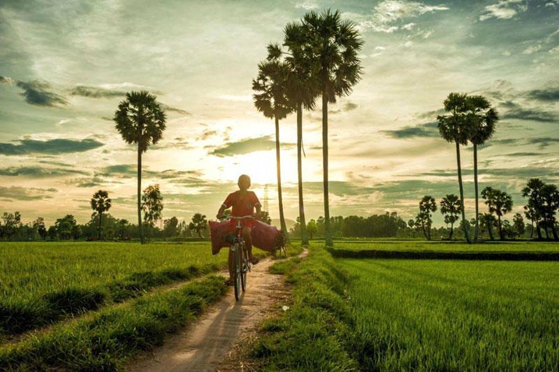Hình ảnh làng quê Việt Nam 028