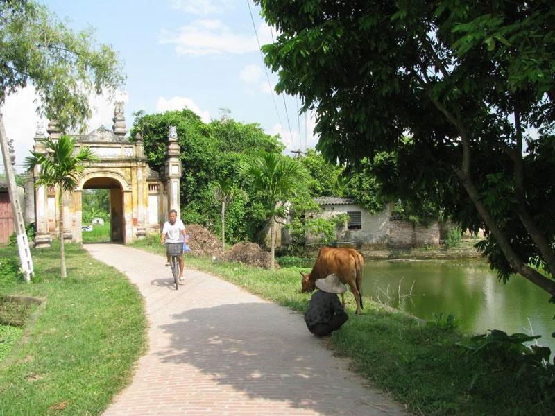 Hình ảnh làng quê Việt Nam 030