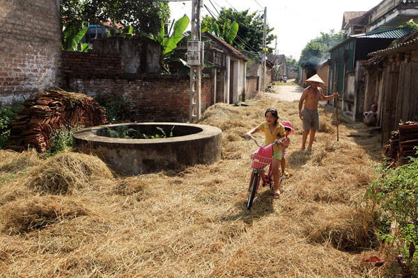 Hình ảnh làng quê Việt Nam 038
