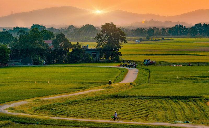 Hình ảnh làng quê Việt Nam 06