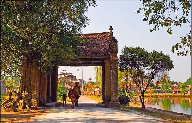 Hình ảnh làng quê Việt Nam 07