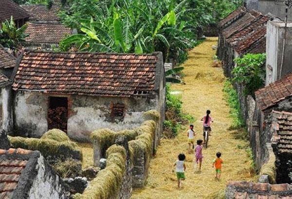 Hình ảnh làng quê Việt Nam 09