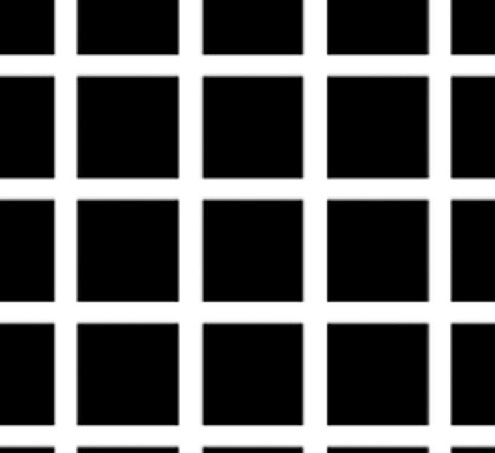 hình ảnh gây ảo giác: Lưới Hermann