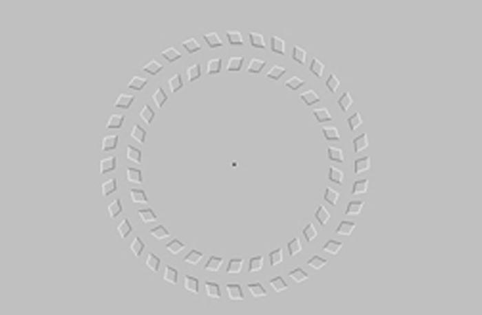 hình ảnh gây ảo giác: vòng xoay đảo chiều