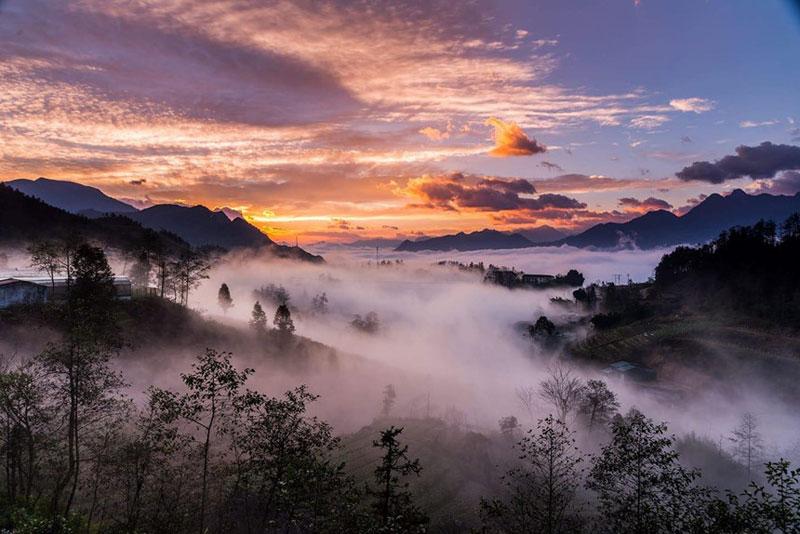 hình ảnh sapa sương mù