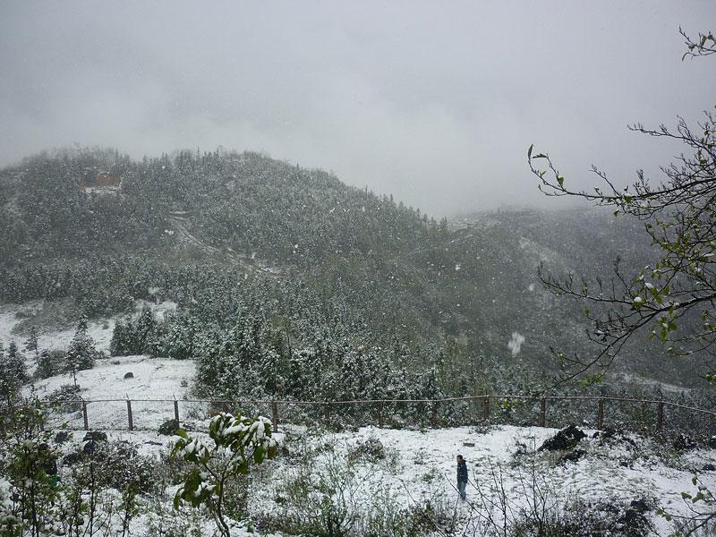 hình ảnh tuyết rơi tại sapa